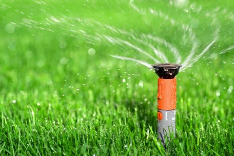 lawn-dreamstime_10219057-Viorel-Railean