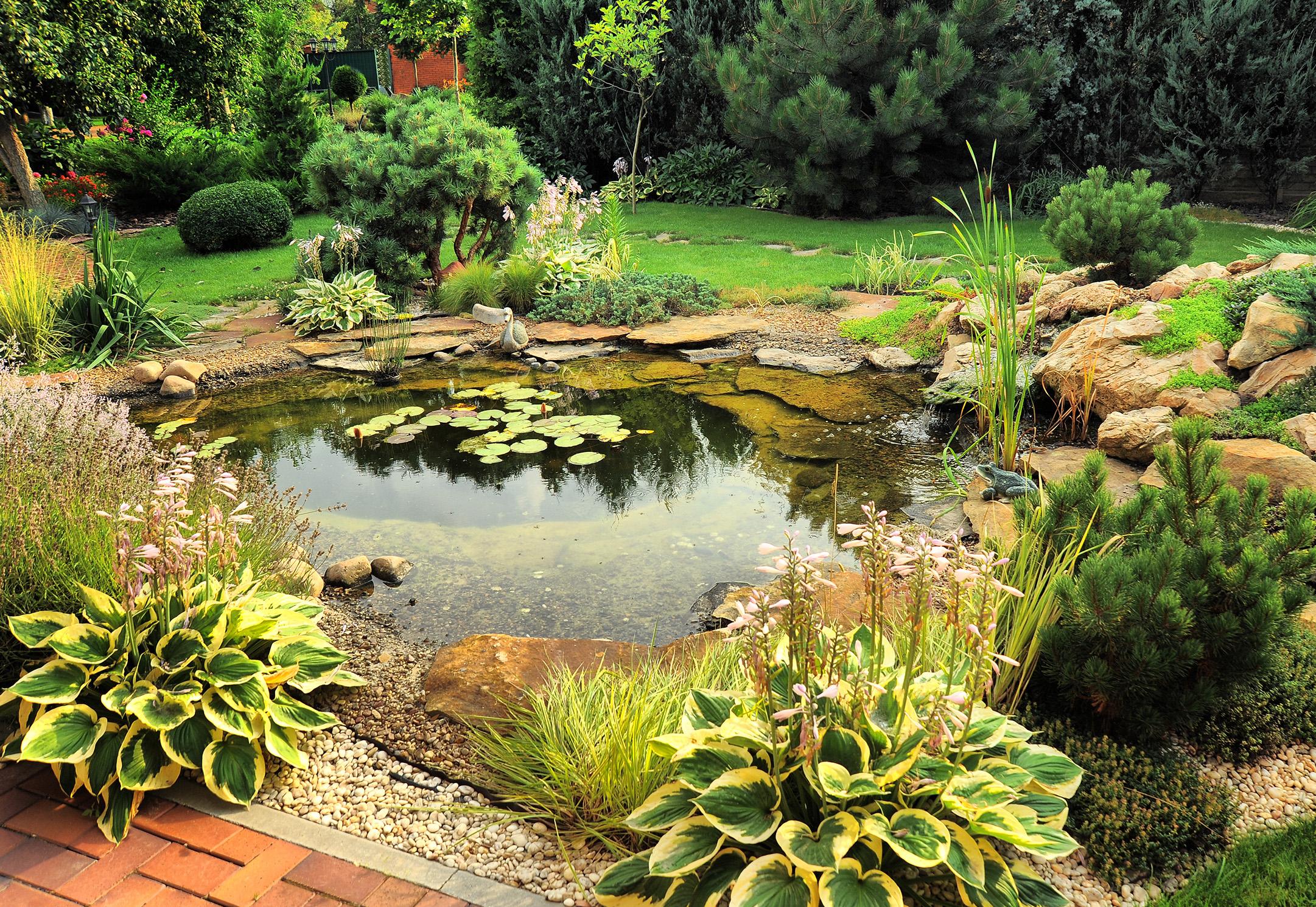 water-garden-residential-pond