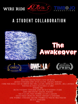 The Awakeover Poster-4