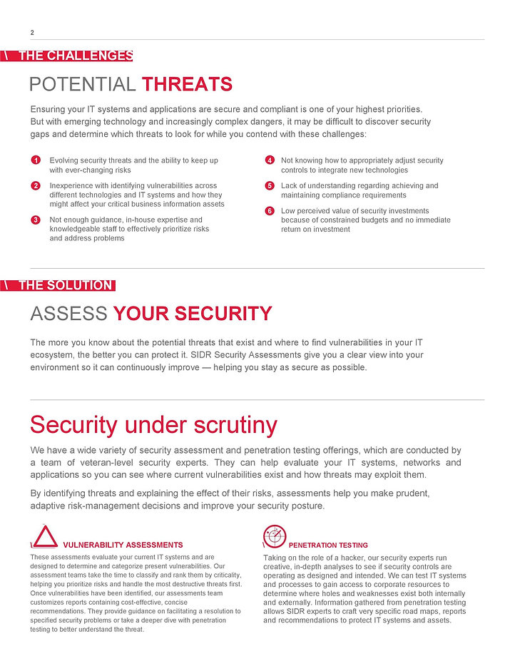 Security-Assessment-Service1-page-002-16