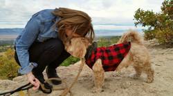 Emotional Animal Support