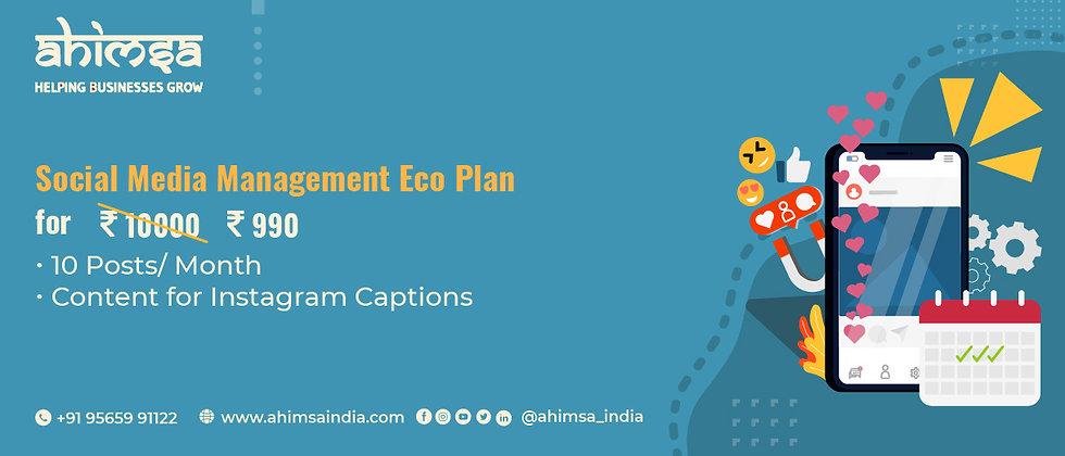 social media management economic plan
