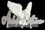 AmbilaNath.com logo