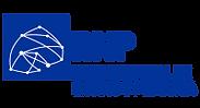 logo%20rnp.png