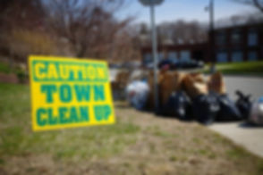 town clean up.jpg
