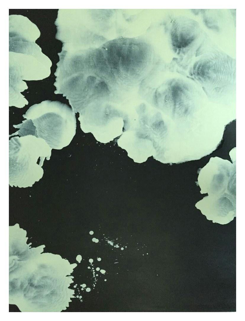 比西里岸之夢 Pisilian 07-85 2007 油彩、畫布 130cm x 100cm