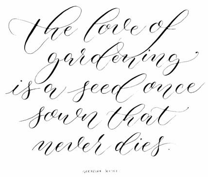 Gertrude Jekyll quote