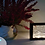 Thumbnail: Lampada cornice