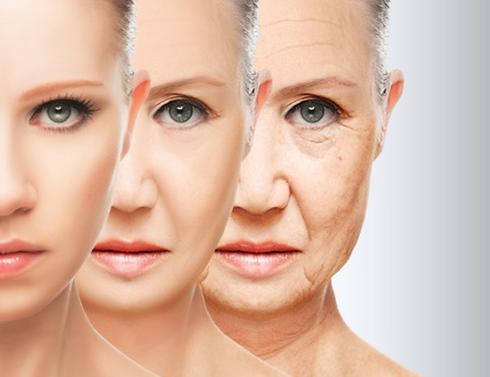 anti-aging.png