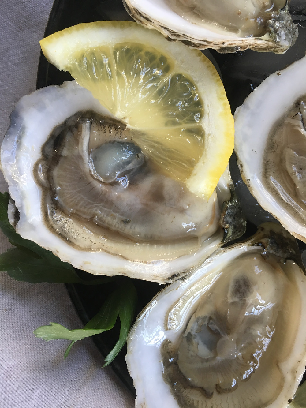 Fresh shucked maine oysters on the half shell grown by Emily's Oysters
