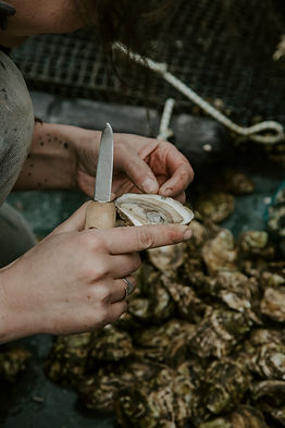Shucking a Maine oyster in Freeport, Maine. Photo: Wylde Photography