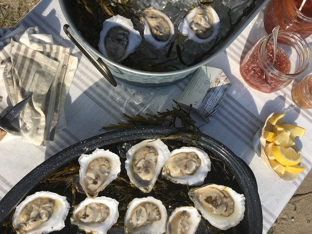oysters on the half shell raw bar maine oysters emilys oysters
