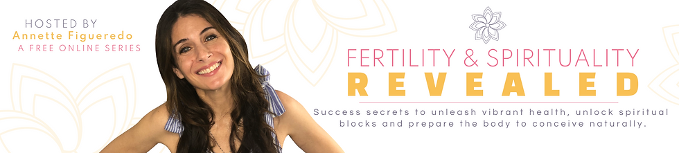 fertility summit banner.png