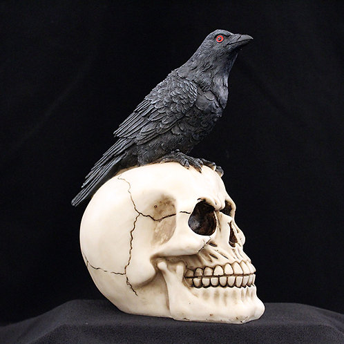 Raven on a skull Ultimyth