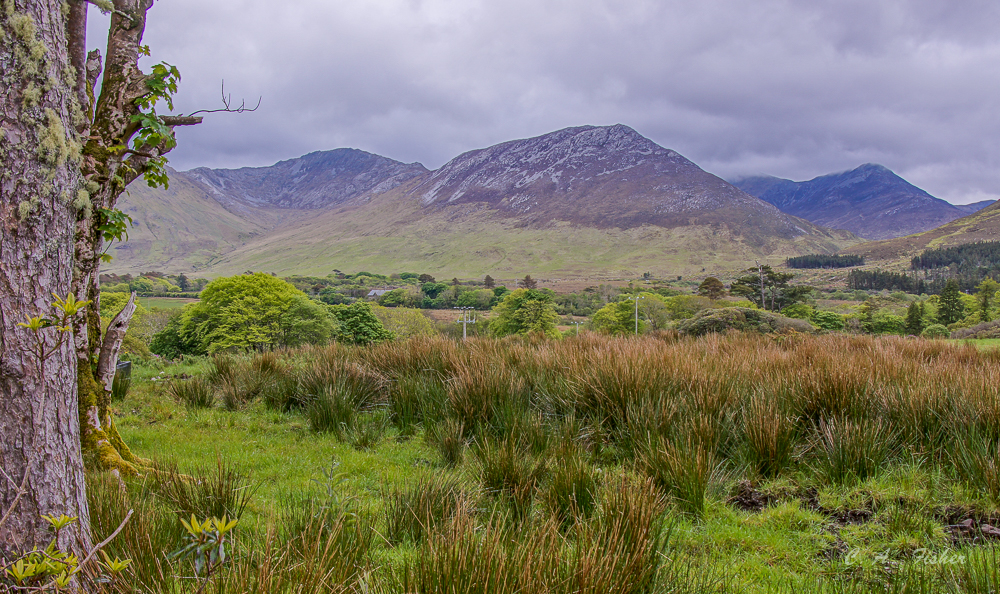 Countryside Near Kylemore Abbey