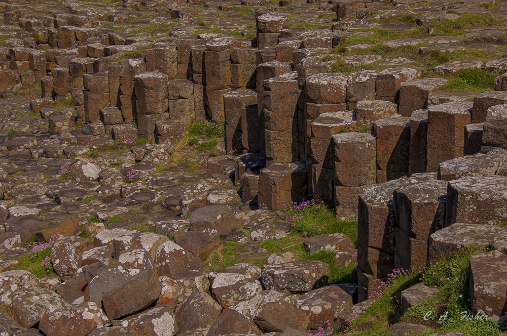 More Basalt Columns
