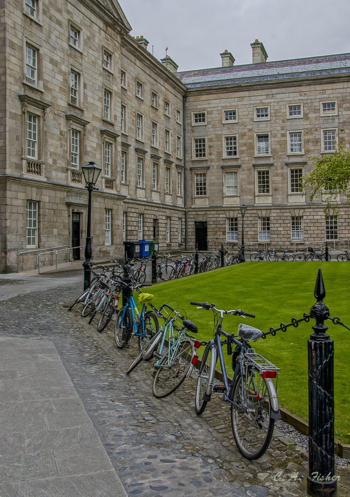 Bicycles at Trinity College