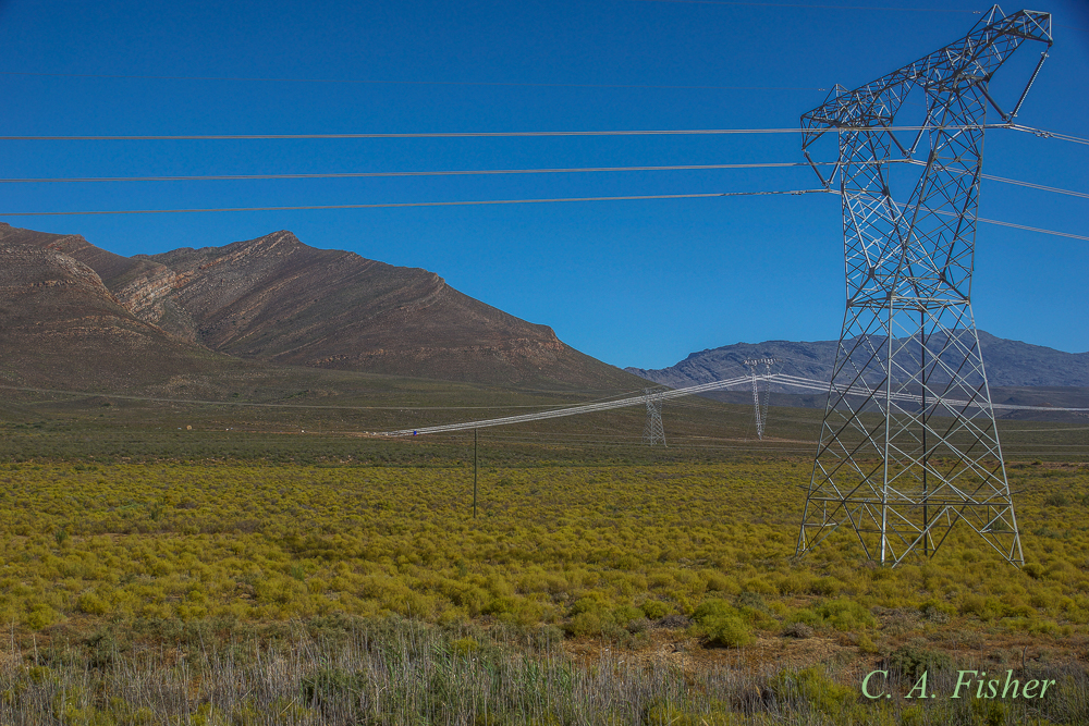 Power Lines in the Karoo