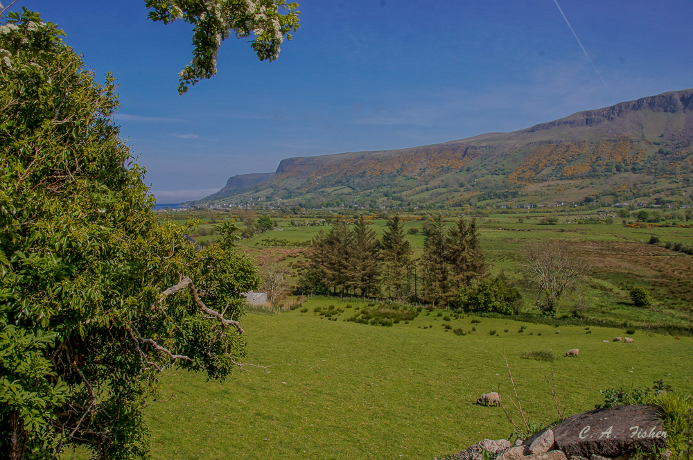 View from The Glenariff Rd.