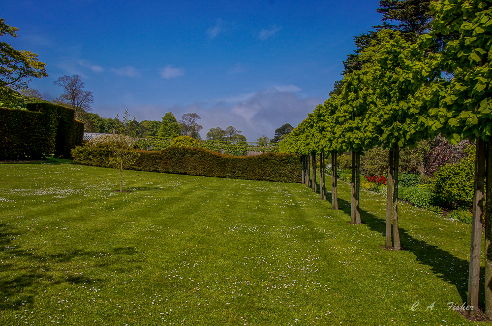 Glenarm Castle Formal Gardens