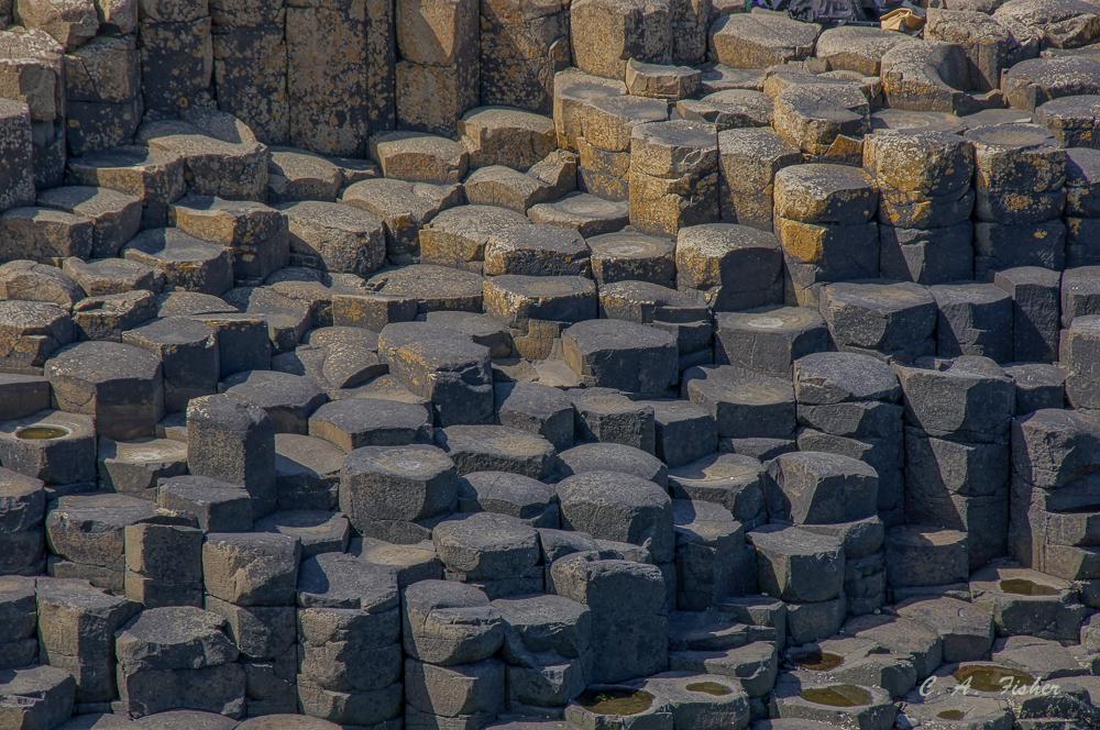 Basalt Columns Closeup