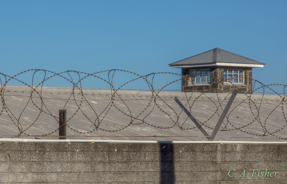 Barbed Wire and Guard Tower