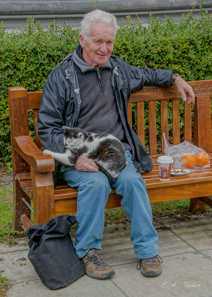 Irishman With Cat