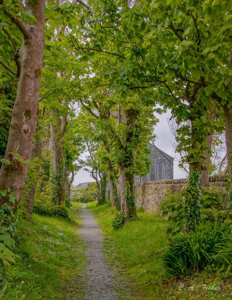 Churchyard Path