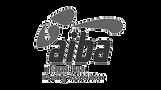 boxverband-aiba-logo_edited.png