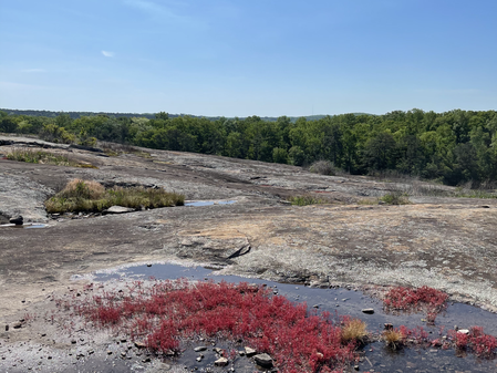 Preserve the Park at Arabia Mountain