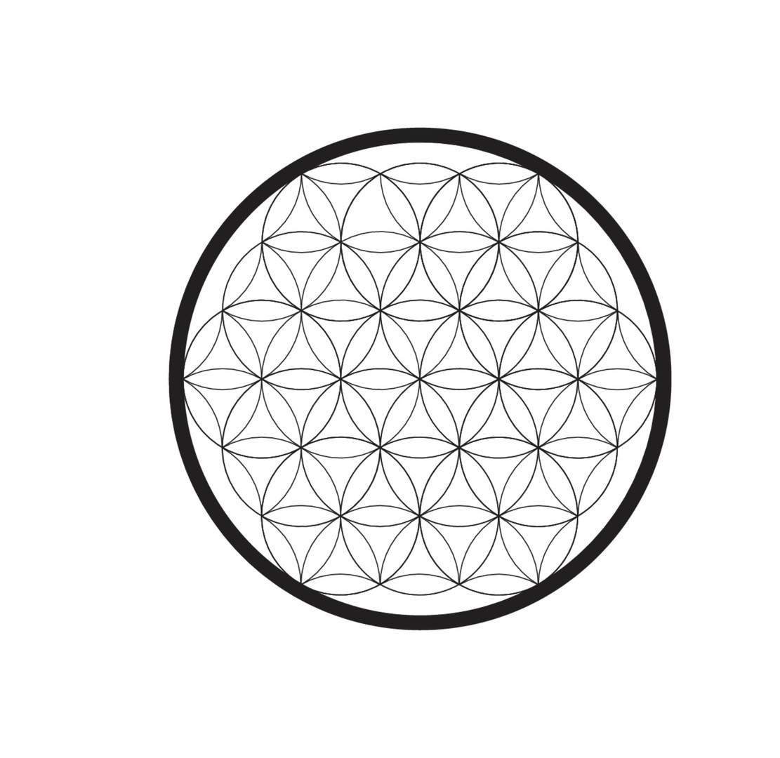 flower of life i made.JPG