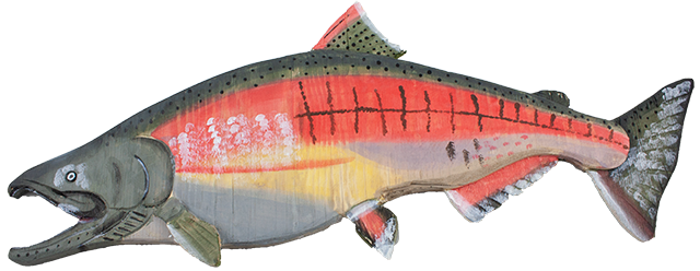 23 inch Wood Salmon Wall Display art B