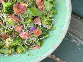 Broccoli med Chinarose