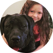Mastiff and girl