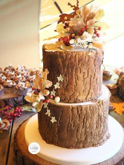 Autumn Log Effect Cake
