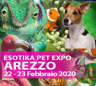 AREZZO_2020.jpg