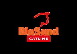 biosand.png