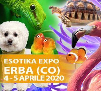 ERBA_2020.jpg