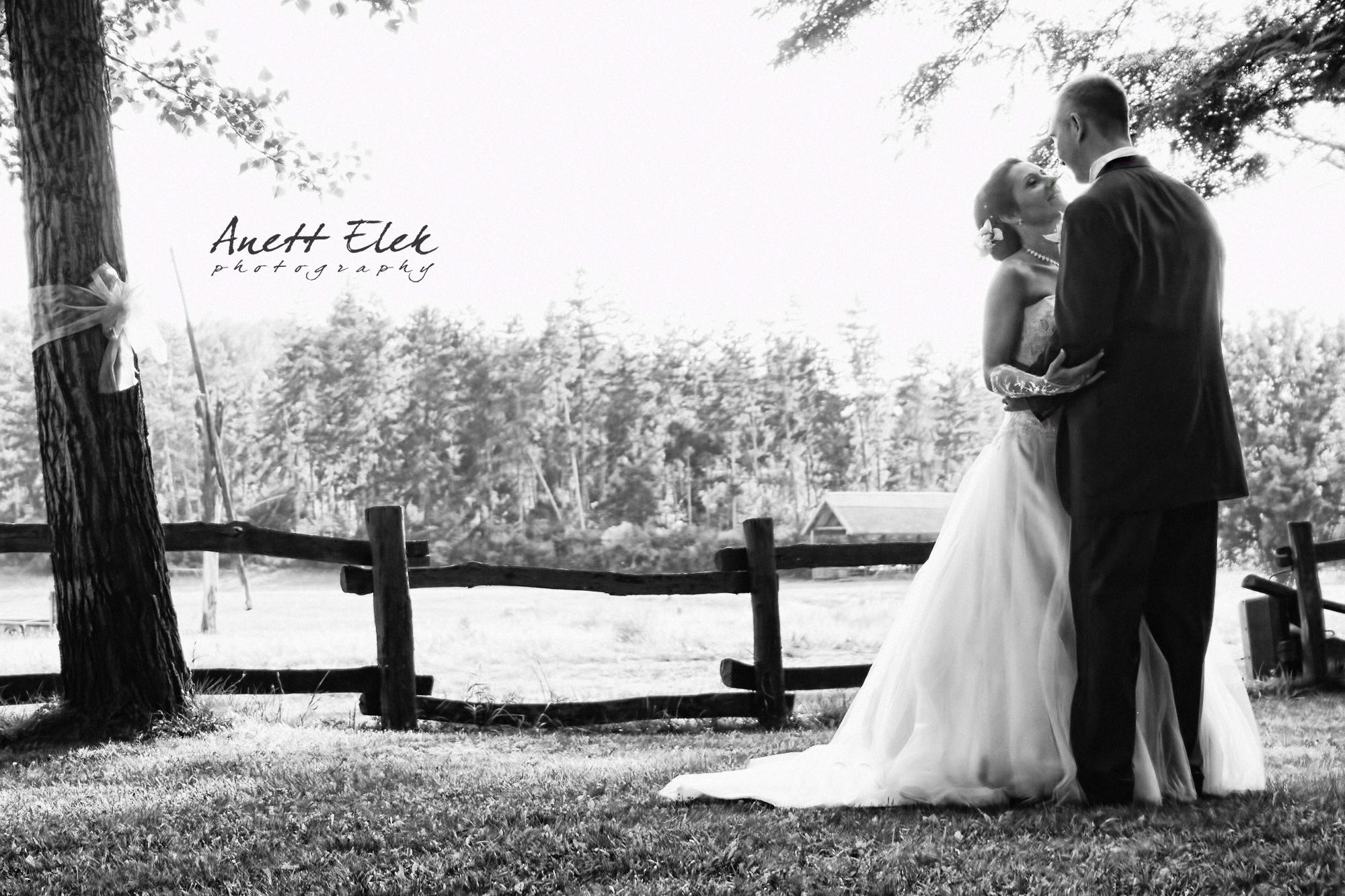 Photographer | Woburn | Anett Elek
