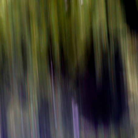 What is Intentional Camera Movement (ICM) Photography?