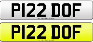 P122 DOF.png