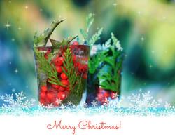Merry Xmas - IMG_4513.jpg