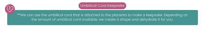 Cord Website.png