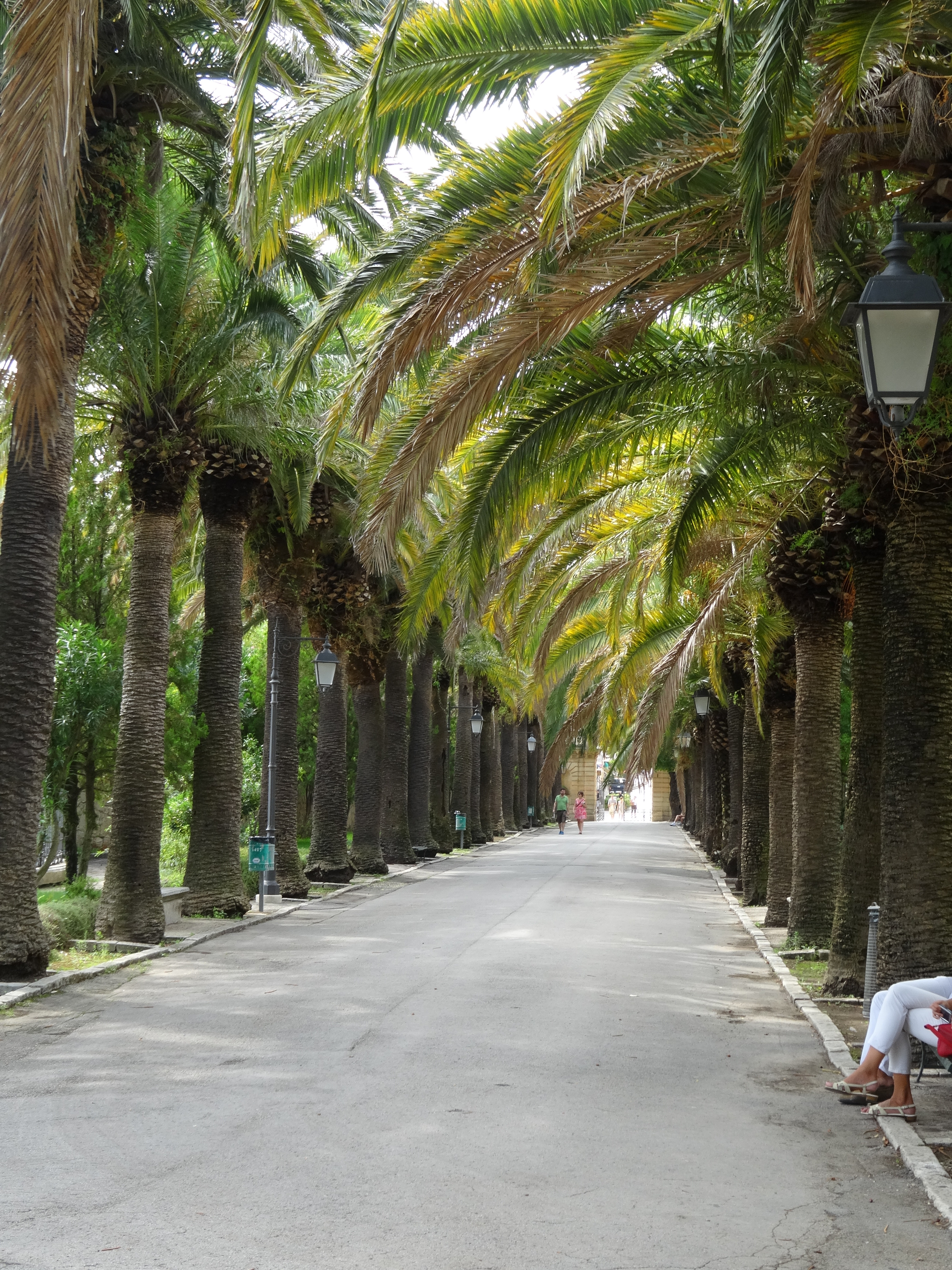 Palm-lined Park Ragusa