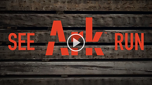 See Ark Run Mailer (1).png