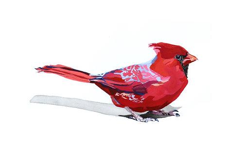 Cardinal No.2