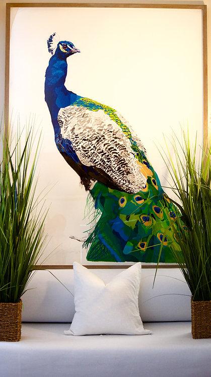Peacock No.1