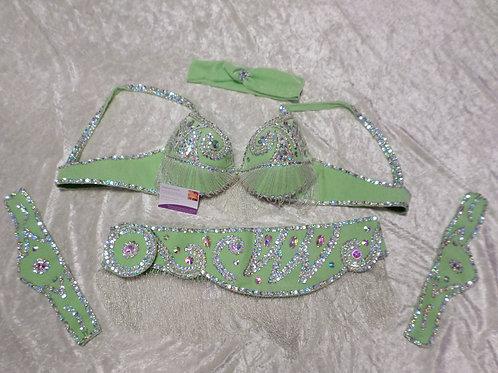 Light Green/Silver Bra and Belt