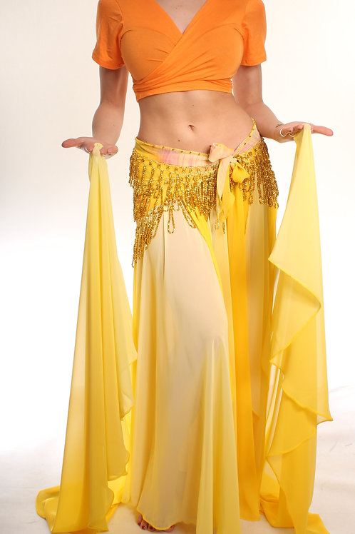 Chiffon Skirt - shaded