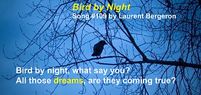 Bird by Night by Laurent Bergeron.jpg